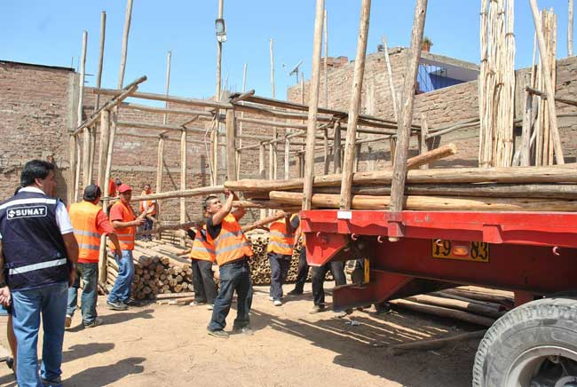 Sunat-comisó-madera-valorada-en-100-mil-soles-en-La-Rinconada