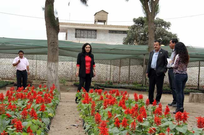 Viveros-de-la-municipalidad-de-Trujillo-tienen-más-de-32-mil-variedades-de-plantas-y-arboles